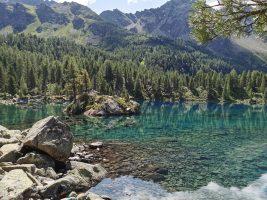 Von der Alp Camp zum Berninahospitz