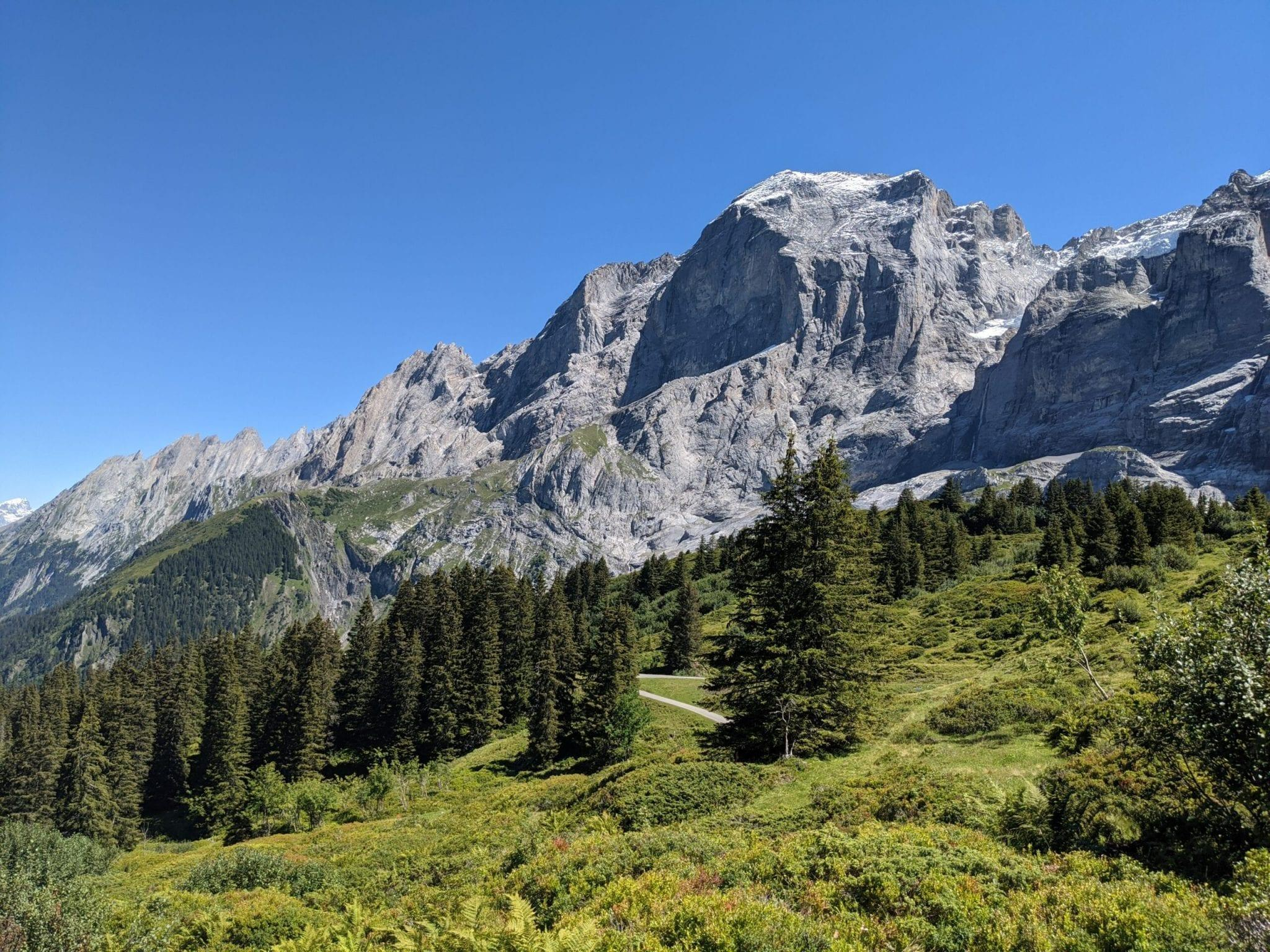 Via Alpina Etappe 10, Meiringen – Grindelwald